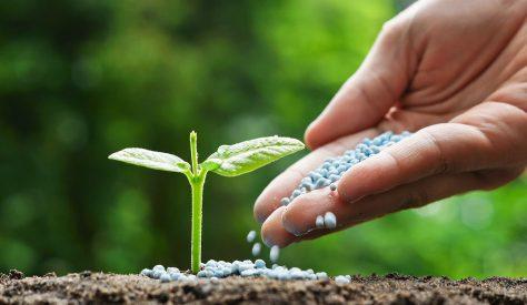 توريد اسمدة لازمة لمزارع بتوشكى لصالح شركة جنوب الوادى للتنمية