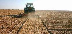 الزراعة تجهز لاستصلاح 688 ألف فدان فى جنوب الضبعة